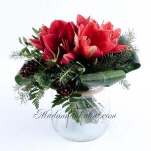 Matala amaryllis kimppu (Punainen)