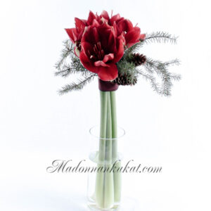 Amaryllis kimppu (punainen)